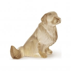 Golden Retriever Gold Luster (10520300)