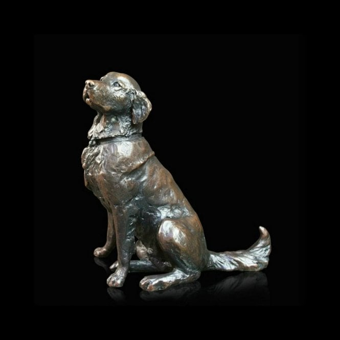 Richard Cooper & Company Medium Retriever Sitting (783)